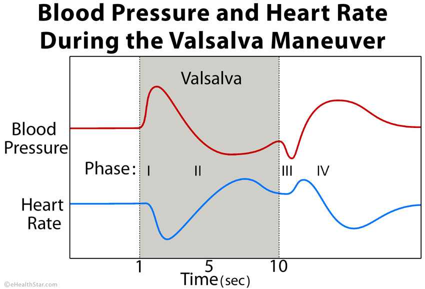 Valsalva maneuver blood pressure heart rate
